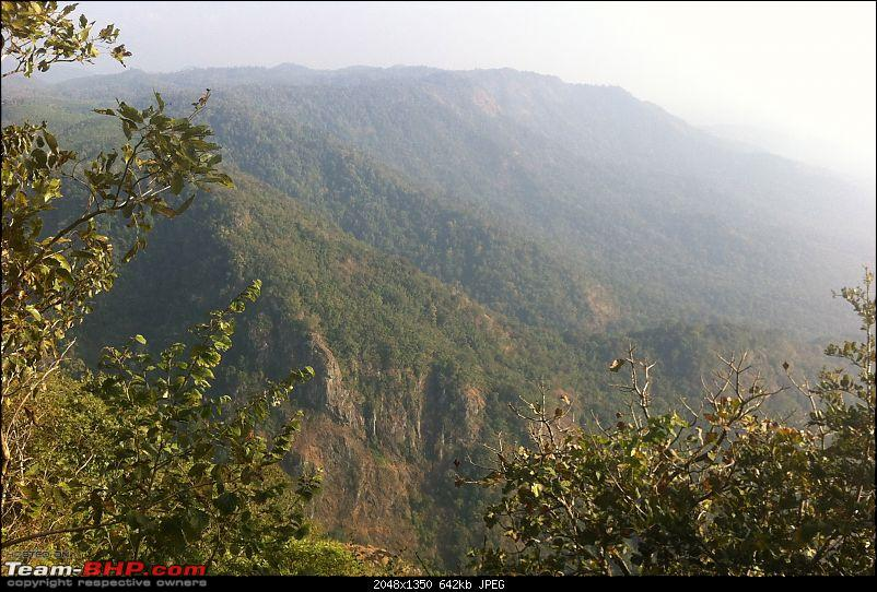 Wayanad - 'Gods Own District' in 'Gods Own Country'!!..-img_1520-copy.jpg