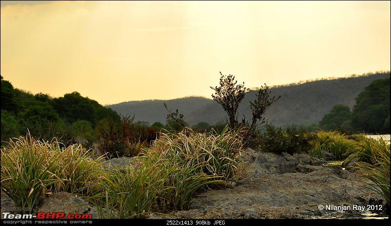 Exploring the Great Indian Outdoors-dsc_2801.jpg