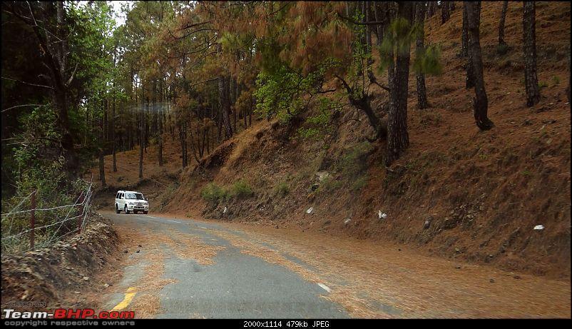 On the trail of the Mukteshwar man eater and her nemesis-dsc00714nbnmn.jpg