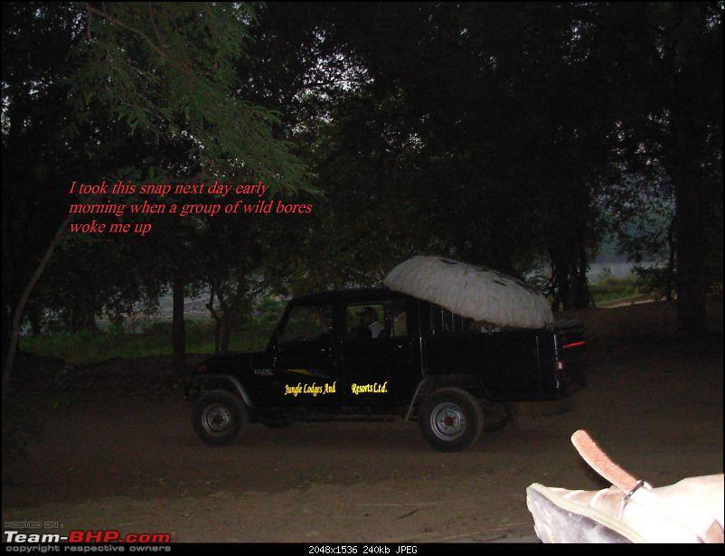 A night in Bheemeshwari-dscn050317.jpg