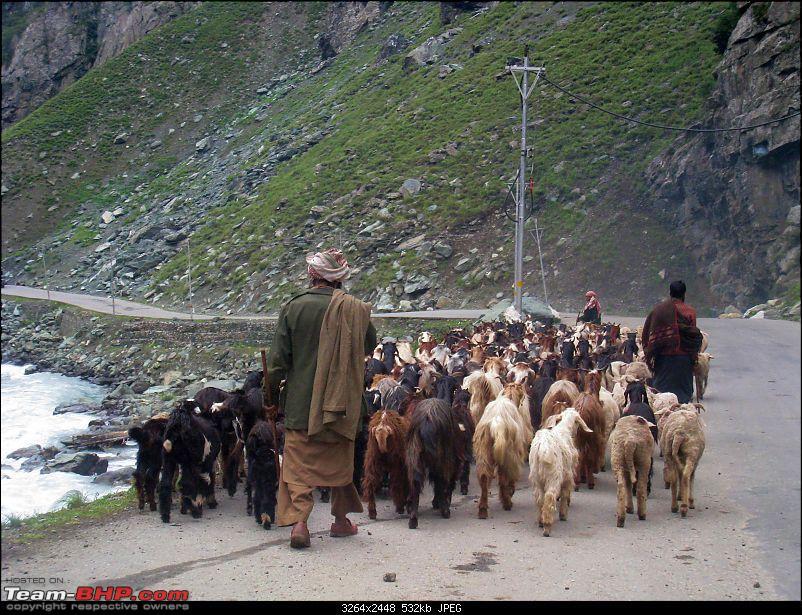 HumbLeh'd II (Indo Polish Himalayan Expedition to Ladakh & Himachal Pradesh)-kargil-srinagar-3054.jpg