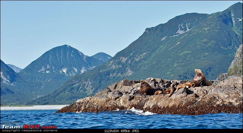 Bears, Volcanoes & what not, Far East Russia: Photologue-_a0r8196tbhp.jpg