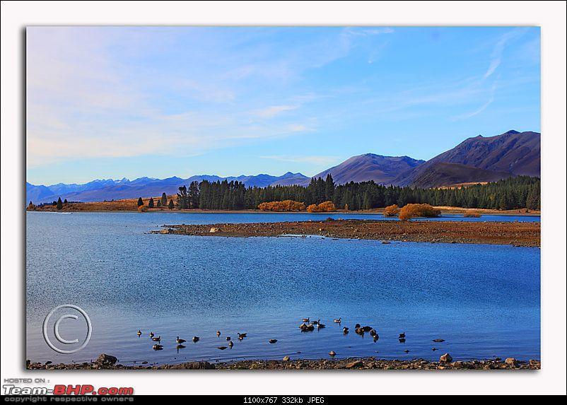 Kia Ora! New Zealand- A 3000 kms driving holiday-12.jpg