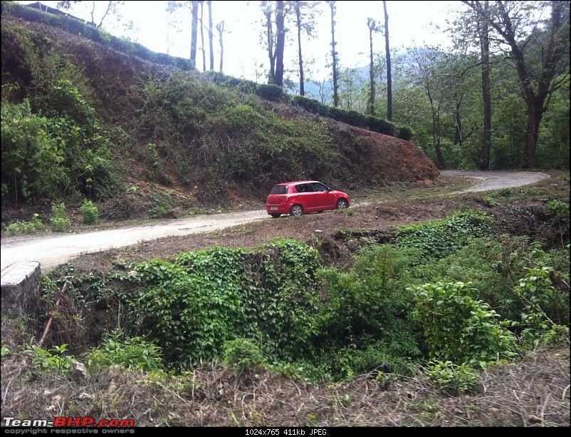 Exploring the Anaimalai Rain forests around Valparai-img_3129.jpg