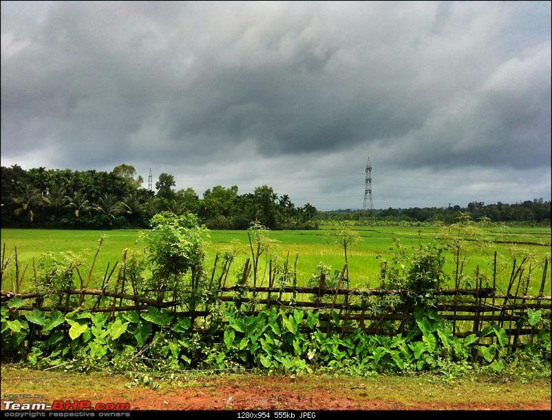 Malnad Odyssey - Scenic Drives through the Western Ghats in Karnataka-photo-10.jpg