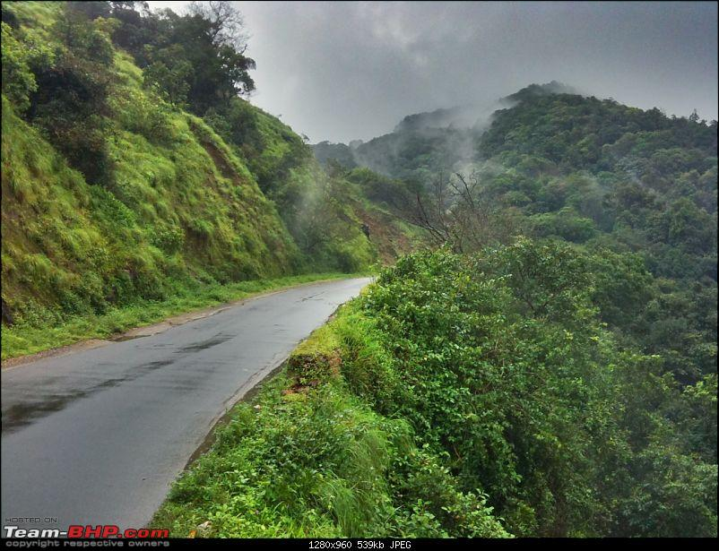 Malnad Odyssey - Scenic Drives through the Western Ghats in Karnataka-photo-22.jpg