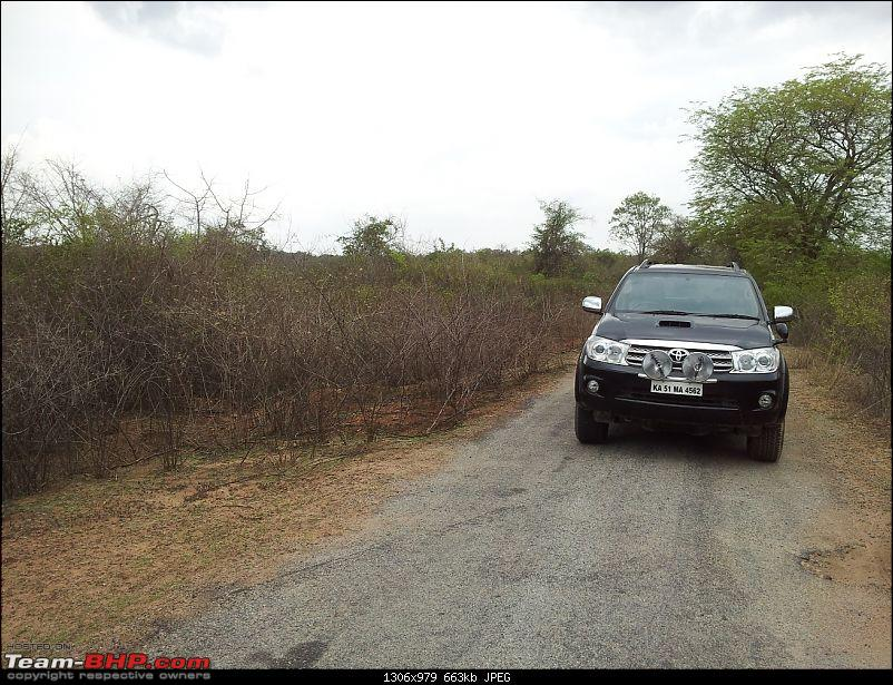 Exploring the Great Indian Outdoors-20120429-15.47.34.jpg