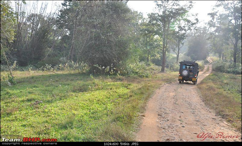 My drive to Coorg, the Scotland of India-dsc_1087.jpg