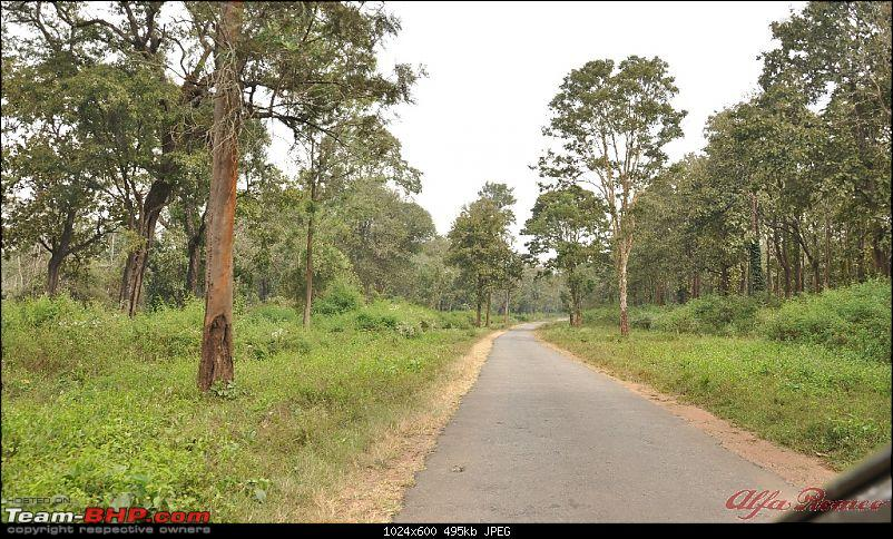 My drive to Coorg, the Scotland of India-dsc_1145.jpg