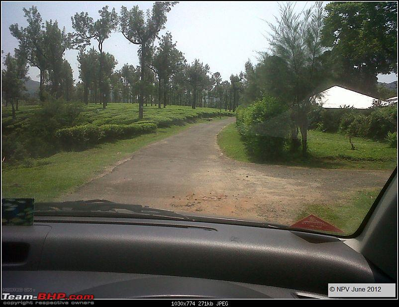 Dizzy Drive® : Wonderful Valparai (enchanted by Sinnadorai's Bungalow) and more!-4.jpg