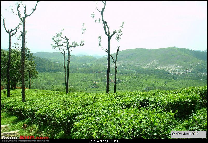 Dizzy Drive® : Wonderful Valparai (enchanted by Sinnadorai's Bungalow) and more!-35.jpg