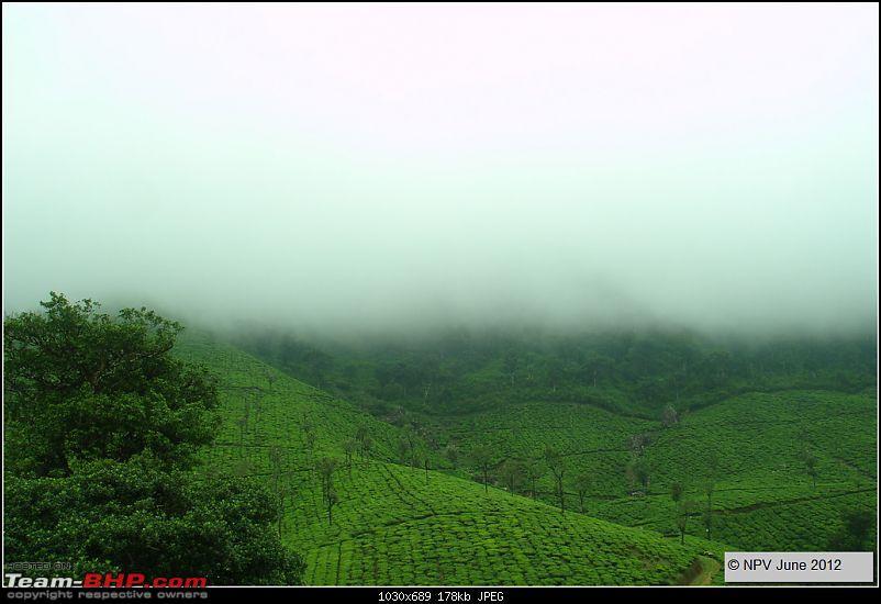 Dizzy Drive� : Wonderful Valparai (enchanted by Sinnadorai's Bungalow) and more!-29.jpg