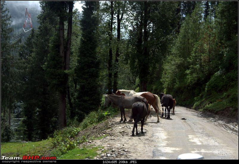 Reflecting on Driving Addictions - Bangalore to Spiti and Changthang-023.jpg