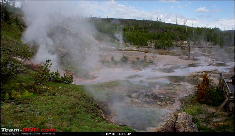 Yellowstone National Park : A Drive to Remember-dsc00661.jpg