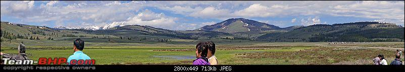 Yellowstone National Park : A Drive to Remember-dsc00673.jpg