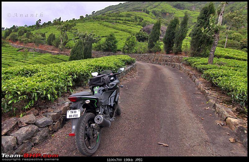 Meghamalai - The Hidden Paradise-img_0482.jpg