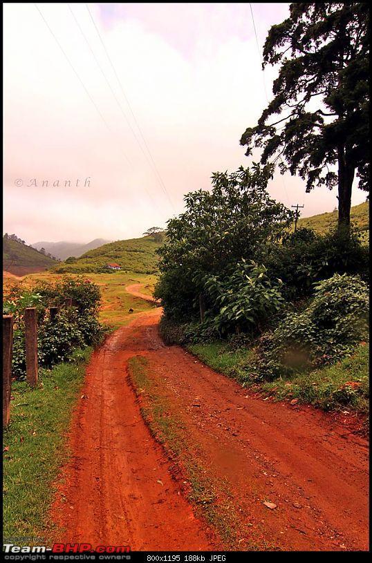 Meghamalai - The Hidden Paradise-img_0610.jpg