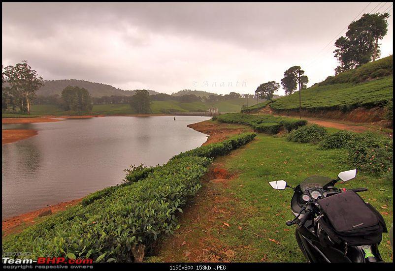 Meghamalai - The Hidden Paradise-img_0777.jpg
