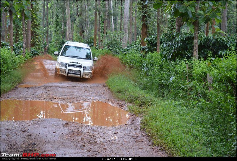 The Quest for Monsoons in the Malnad Region-dsc_0208.jpg