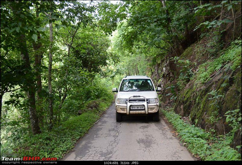 The Quest for Monsoons in the Malnad Region-dsc_0330.jpg