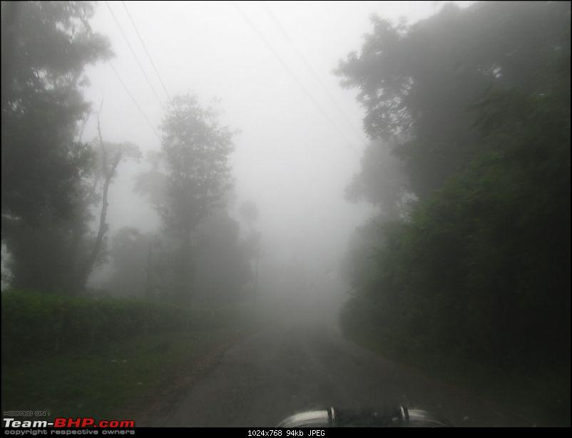 The Quest for Monsoons in the Malnad Region-img_2348.jpg