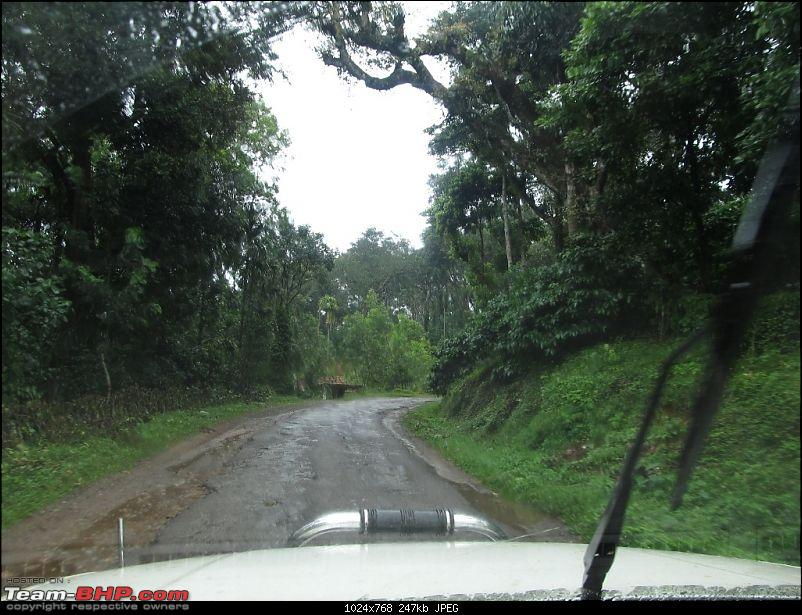The Quest for Monsoons in the Malnad Region-img_2366.jpg