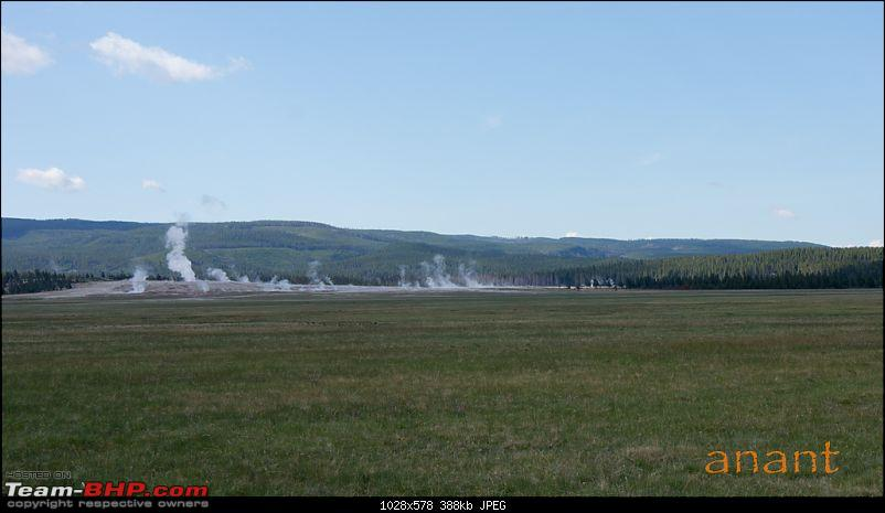 Yellowstone National Park : A Drive to Remember-dsc00747.jpg