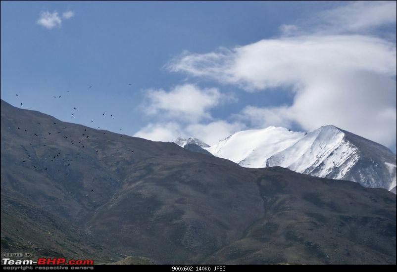 Spiti Drive, June 2012 - Family, Friends, Border Posts, Wildlife and more...-dsc09830.jpg