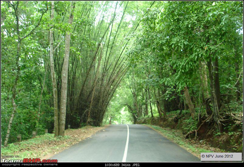 Dizzy Drive® : Wonderful Valparai (enchanted by Sinnadorai's Bungalow) and more!-12.jpg