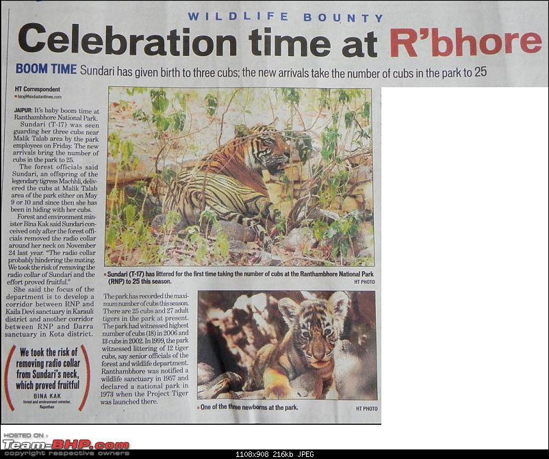 Gurgaon - Ranthambhore - Jodhpur - Gurgaon: Big Cats call again..!-sariska1.jpg