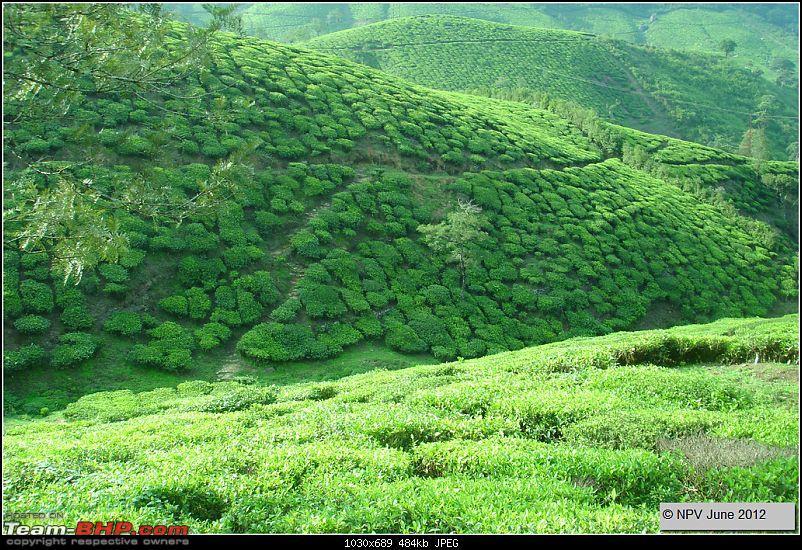 Dizzy Drive® : Wonderful Valparai (enchanted by Sinnadorai's Bungalow) and more!-23.jpg