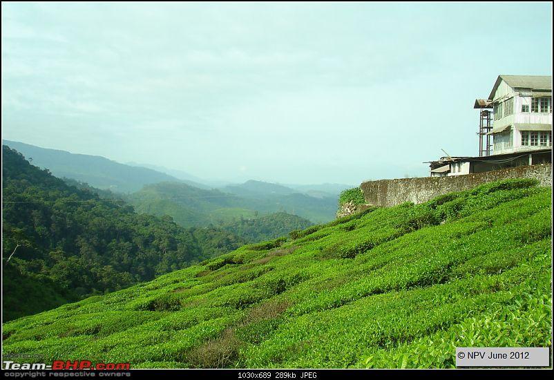 Dizzy Drive® : Wonderful Valparai (enchanted by Sinnadorai's Bungalow) and more!-31.jpg