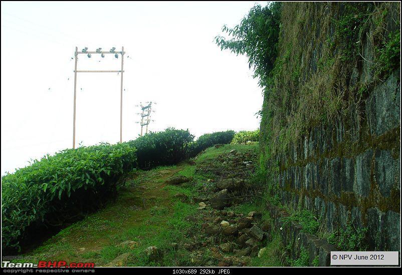 Dizzy Drive® : Wonderful Valparai (enchanted by Sinnadorai's Bungalow) and more!-311.jpg