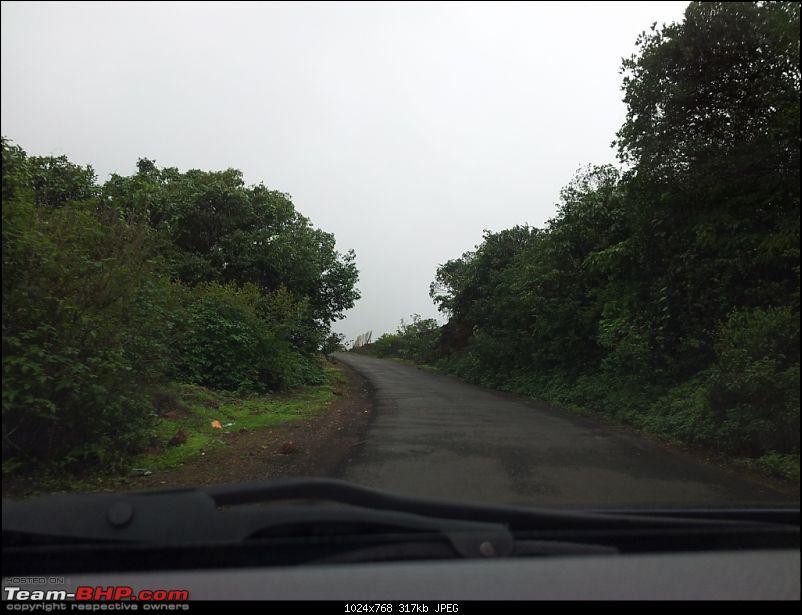 Kaas (Maharashtra) -The Plateau of flowers-20120708_150621.jpg
