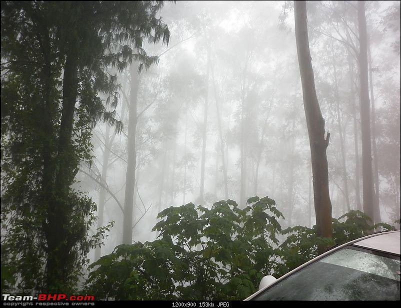 Munnar - A dash to the bewitching place inspired by Team-BHP-fog2.jpg