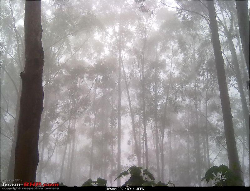 Munnar - A dash to the bewitching place inspired by Team-BHP-fog16.jpg