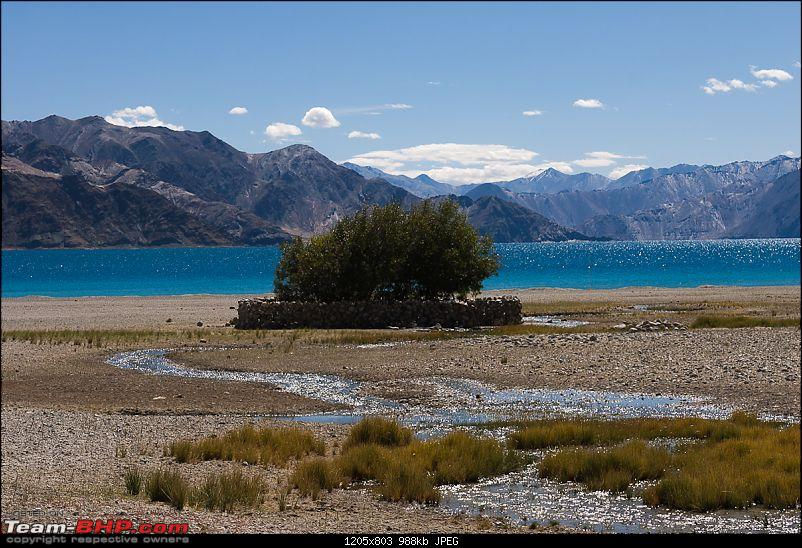 Reflecting on Driving Addictions - Bangalore to Spiti and Changthang-54.jpg
