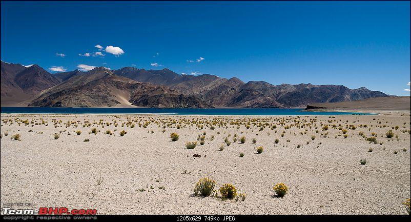 Reflecting on Driving Addictions - Bangalore to Spiti and Changthang-59.jpg