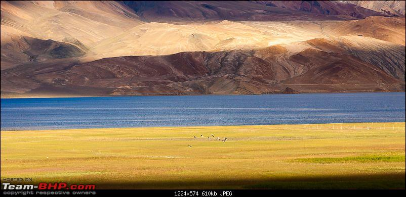 Reflecting on Driving Addictions - Bangalore to Spiti and Changthang-155.jpg