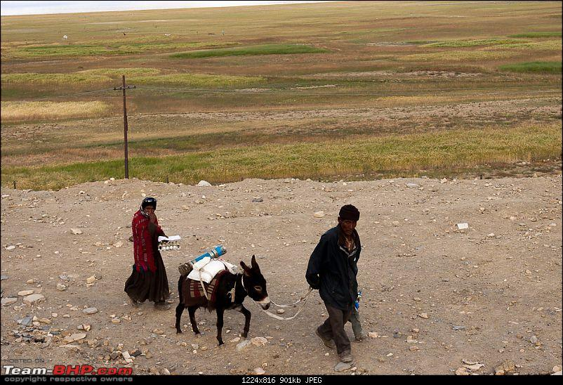 Reflecting on Driving Addictions - Bangalore to Spiti and Changthang-165.jpg