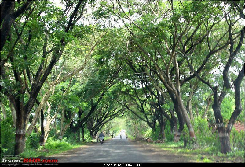A Trip Down South : Pune - Goa - Bangalore - Chennai-img_4202.jpg