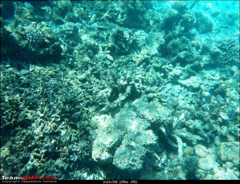 Maldives - An Exotic Paradise!-0083.jpg