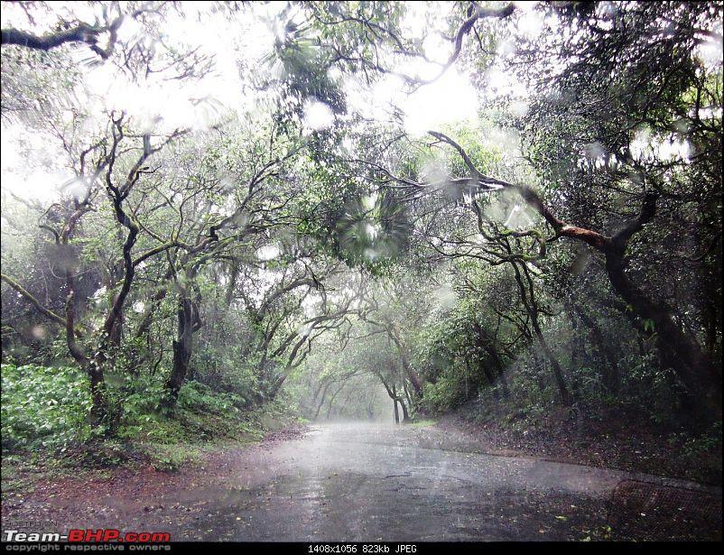 A Beautiful new Road to Panchgani-img_1429.jpg