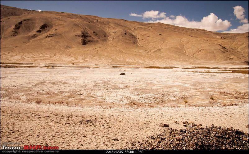 Reflecting on Driving Addictions - Bangalore to Spiti and Changthang-16.jpg