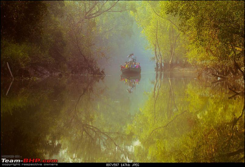 Making the most of my Sabbatical. EDIT : Thread Closed due to plagiarism.-sundarban-misty-morning.jpg