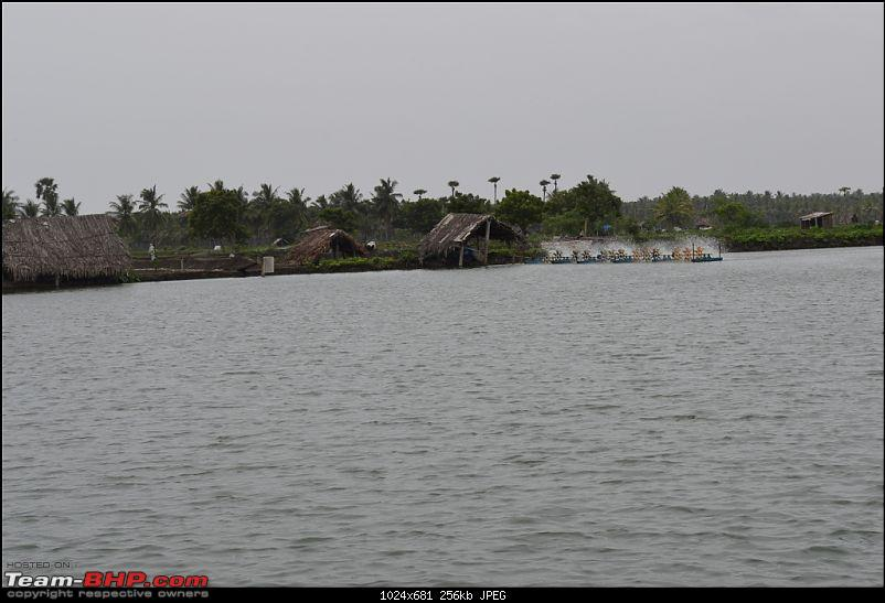 Konaseema - The land of enchanting beauty-_dsc0112.jpg