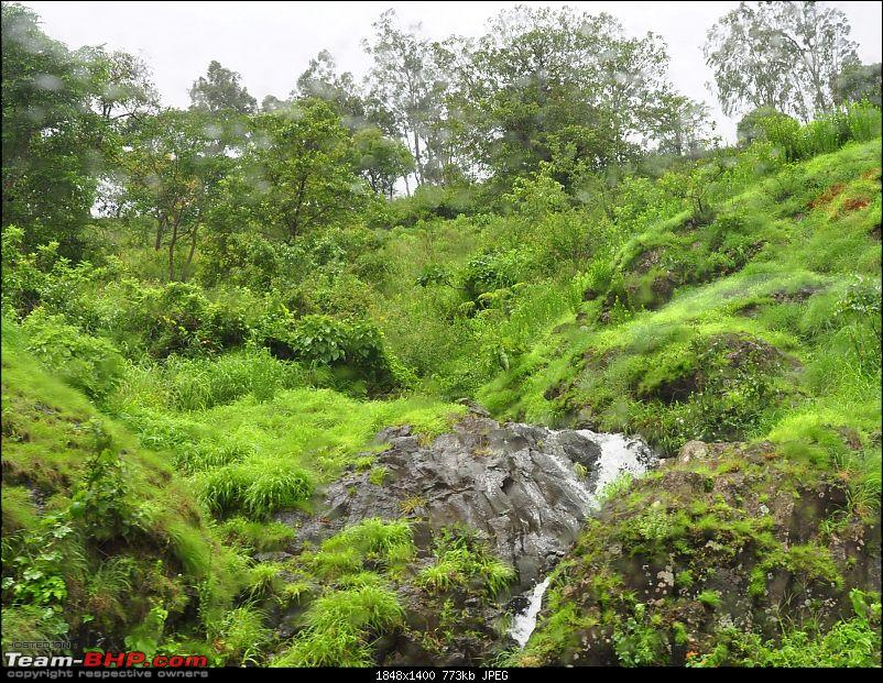Chasing the fog and the waterfalls - A weekend trip to Mahabaleshwar and Tapola-dsc_0072.jpg