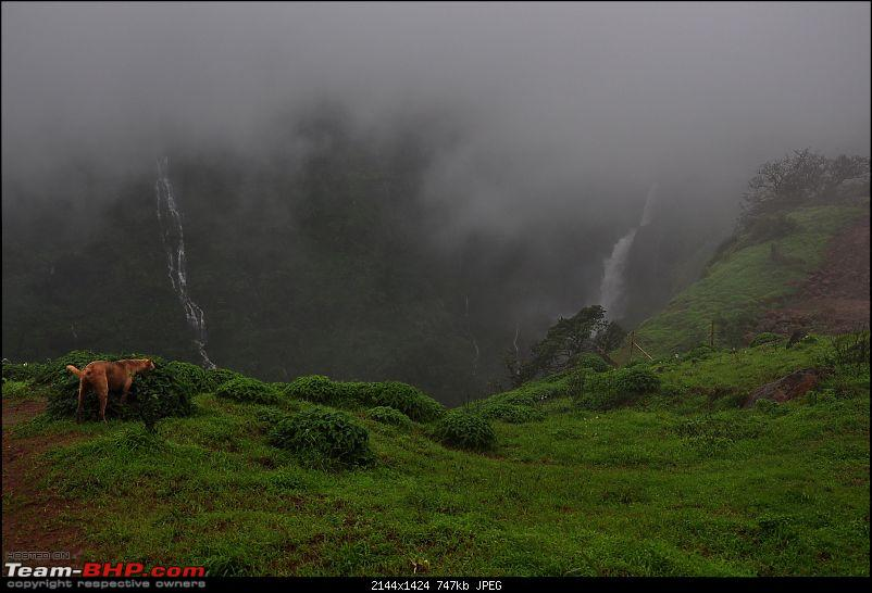 Chasing the fog and the waterfalls - A weekend trip to Mahabaleshwar and Tapola-dsc_0147.jpg