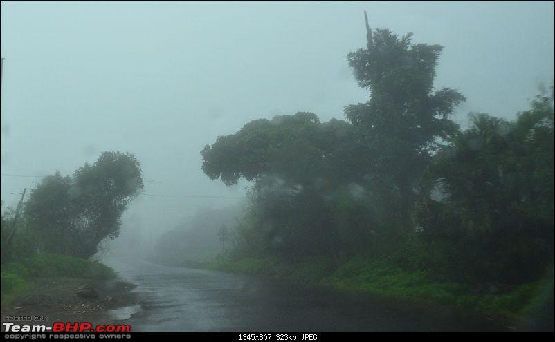 Chasing the fog and the waterfalls - A weekend trip to Mahabaleshwar and Tapola-dsc_0281.jpg