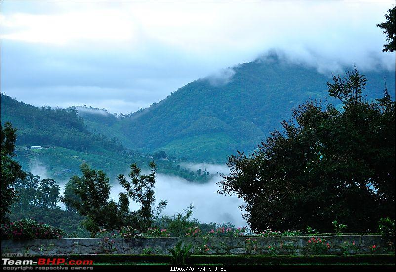 Valparai - The green carpet with great flora & fauna-valparai417.jpg